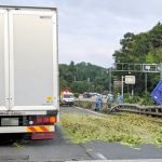 ブロッコリーで二時間通行止めの名阪国道の現場動画🥦!!